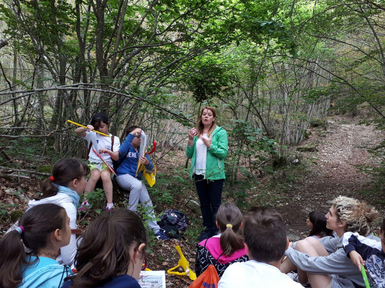 resilienza e folklore nei campi estivi