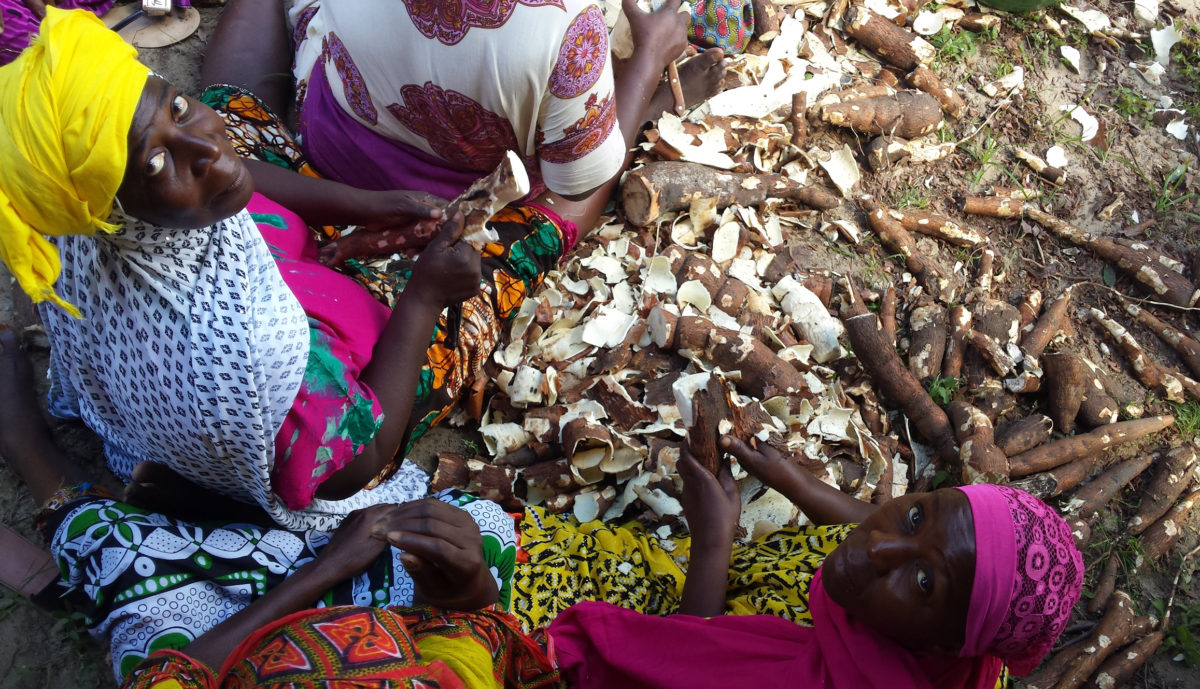 Formazione al lavoro in Tanzania