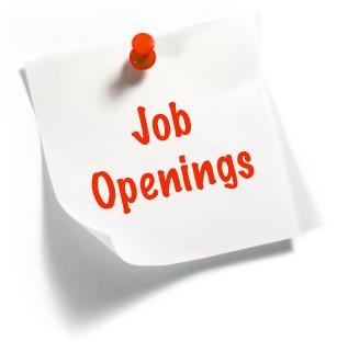 Cvm cerca Desk Officer Educazione allo sviluppo e Immigrazione | posizione aperta per Italia
